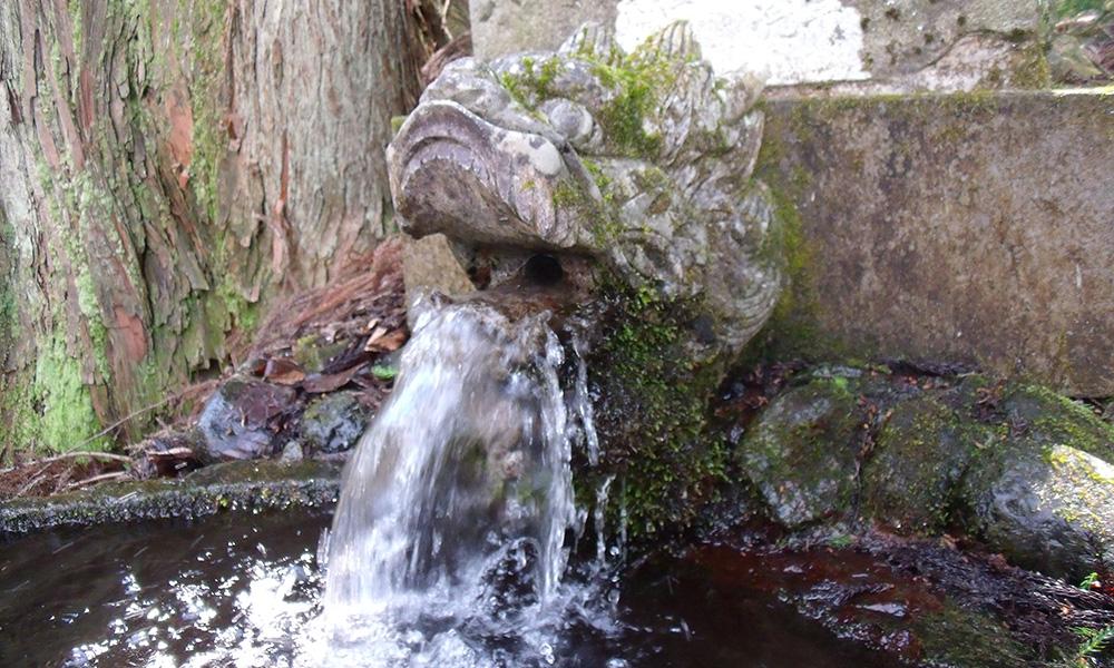 雷電様の水